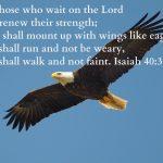 Quote : God's strength